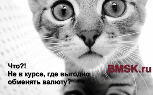 Где можно выгодно обменять валюту? BMSK.ru