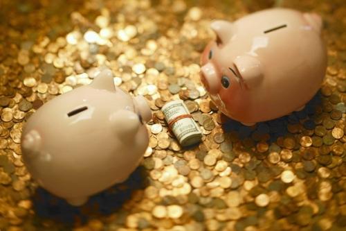 Главное доход, а капитализацией или без это не важно